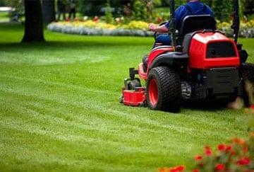 Košenje dvorišta i održavanje istih